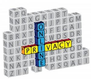 Privacy Policy of North Texas Web Design