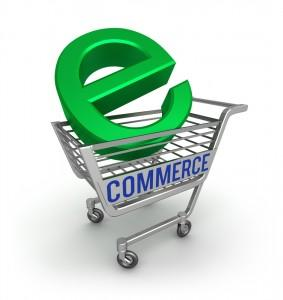 The Pros and Cons of hosted eCommerce Websites