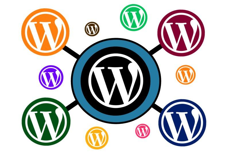 Why is WordPress so popular?