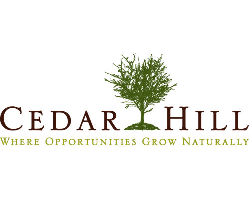 Web Design for clients in the City of Cedar Hill