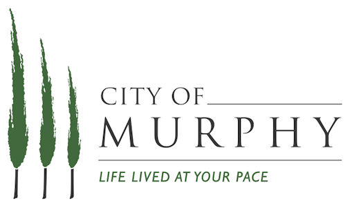 Web Design for clients in the City of Murphy